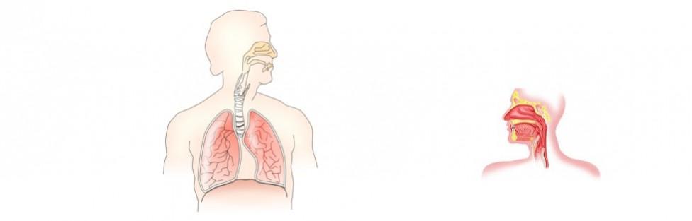 Akutne upalne bolesti dišnog sustava